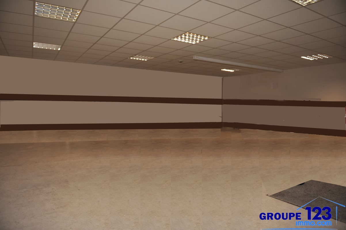 Vente Immobilier Professionnel Local commercial Appoigny (89380)